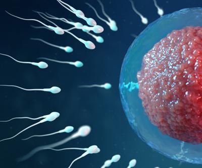 Artificial Reproductive Technologies (ART)